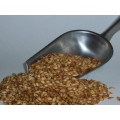 Honey Malt (1kg)