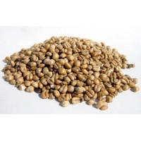 Maltað Hveiti (Wheat)
